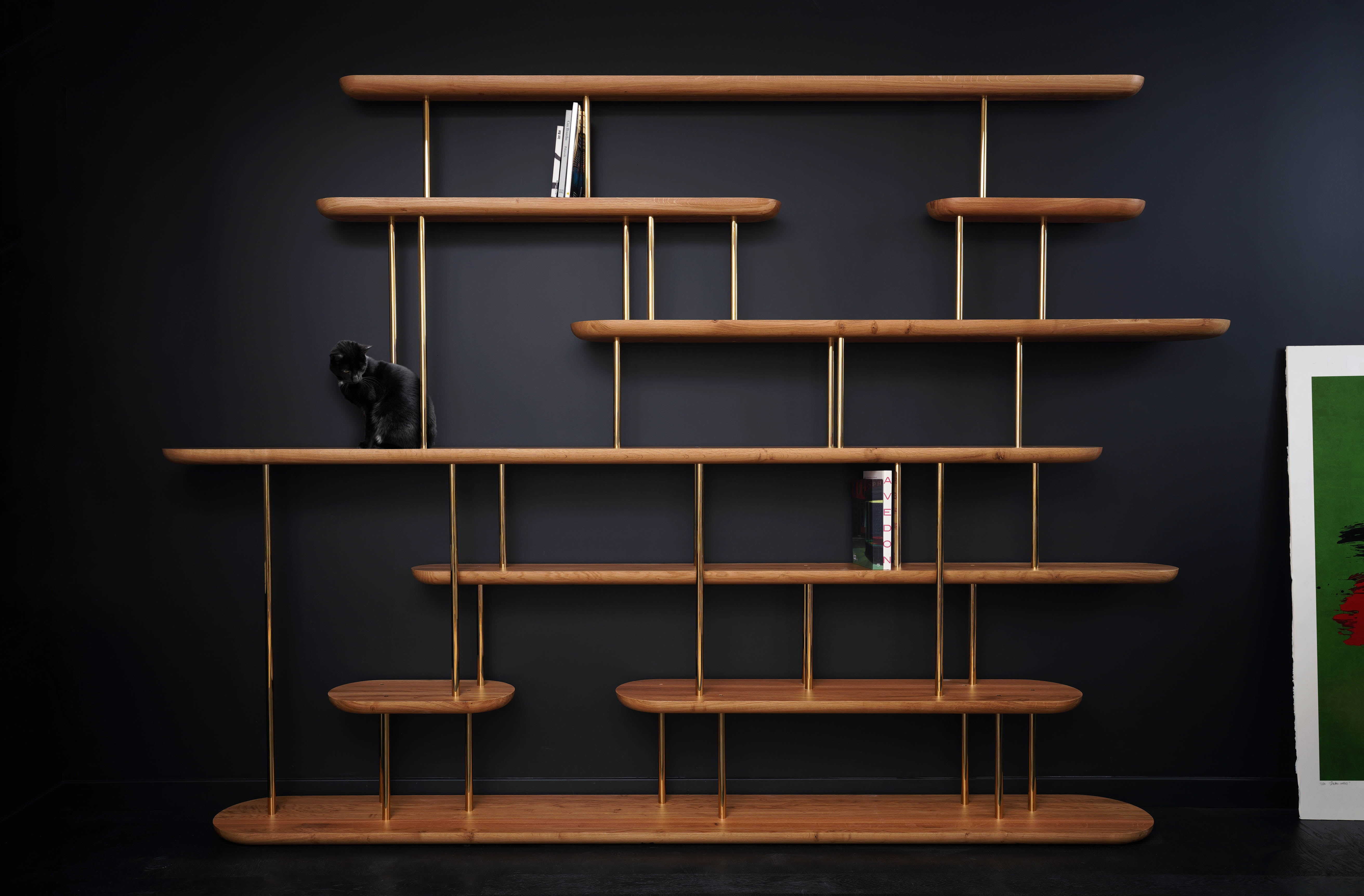 bookcase-marine